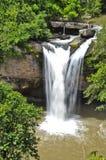 Beautiful waterfall in the jungle. Stock Photography