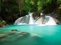 Beautiful waterfall in the jungle Royalty Free Stock Photography