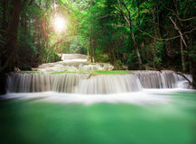 Beautiful Waterfall in the Jungle Stock Images