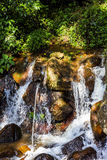 Beautiful waterfall in the jungle at sunny day Stock Photos