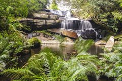Beautiful waterfall in the jungle. Royalty Free Stock Photo