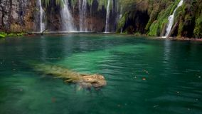 Beautiful waterfall, lakes and autumn forest in Plitvice National Park, Croatia.  stock footage