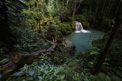 Beautiful waterfall in a lush tropical rainforest royalty free stock photos