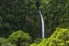 Beautiful waterfall from the middle of the Costa Rican rain-forest. Royalty Free Stock Images