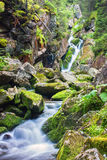 Beautiful waterfall in the middle of forest. Beautiful waterfall in the middle of green forest in Retezat mountains Stock Photo