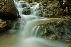 Beautiful waterfall in the mountain. Mountain river. Water royalty free stock images