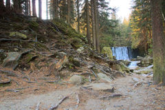 Beautiful waterfall on a mountain slope. River with cascades Royalty Free Stock Photo