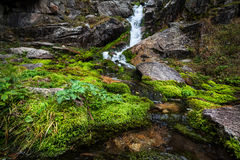 Beautiful waterfall in the mountains Royalty Free Stock Photo