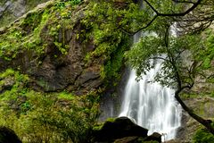 Beautiful waterfall in the national park forest stock image