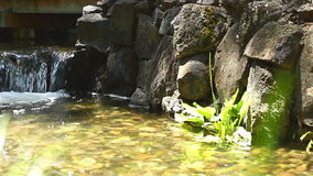 Beautiful waterfall at nature stock video footage