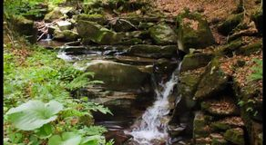 Beautiful waterfall out of rock in the forest. Incredibly beautiful and clean little waterfall with several cascades over large stones in the forest comes out of stock video footage