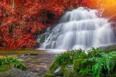 Beautiful waterfall in rainforest at phu tub berk mountain  phet. Chabun, Thailand. & x28;Mun Dang waterfalls& x29 Stock Photography