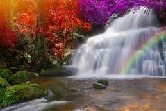 Beautiful waterfall in rainforest at phu tub berk mountain  phet. Beautiful waterfall in rainforest at phu tub berk mountain phetchabun, Thailand. & x28;Mun Dang Royalty Free Stock Image