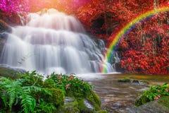 Beautiful waterfall in rainforest at phu tub berk mountain  phet. Chabun, Thailand. & x28;Mun Dang waterfalls& x29 Stock Photo