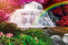 Beautiful waterfall in rainforest at phu tub berk mountain  phet. Chabun, Thailand. & x28;Mun Dang waterfalls& x29 Royalty Free Stock Image