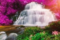 Beautiful waterfall in rainforest at phu tub berk mountain  phet. Chabun, Thailand. & x28;Mun Dang waterfalls& x29 Royalty Free Stock Photos