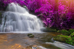 Beautiful waterfall in rainforest at phu tub berk mountain  phet. Beautiful waterfall in rainforest at phu tub berk mountain phetchabun, Thailand. & x28;Mun Dang Royalty Free Stock Photography