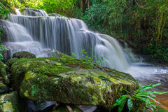 beautiful waterfall in rainforest at phu tub berk mountain  phet Royalty Free Stock Photo