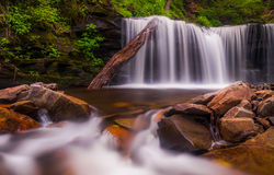 Beautiful waterfall at Rickett's Glen State Park Royalty Free Stock Photography