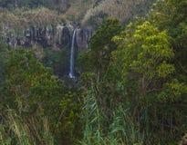 Beautiful waterfall Salto da Farinha falling from rocks in lush green rainforest vegetation, Sao Miguel, Azores. Portugal stock photos