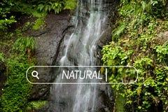 Beautiful waterfall. Stock Images