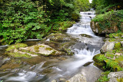 Beautiful waterfall slow motion in summer Royalty Free Stock Photos
