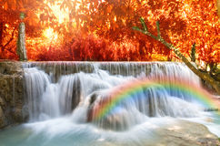 Beautiful waterfall with soft focus and rainbow in the forest. Business concept Stock Photos