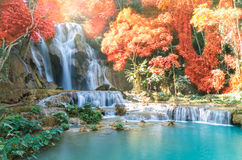 Beautiful waterfall with soft focus and rainbow in the forest. Business concept Stock Photography