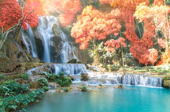 Beautiful waterfall with soft focus and rainbow in the forest. Business concept Royalty Free Stock Photography