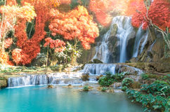 Beautiful waterfall with soft focus and rainbow in the forest. Business concetp Royalty Free Stock Images
