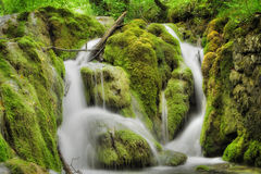 beautiful Waterfall in spring time Royalty Free Stock Photos