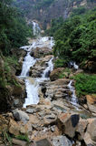 Beautiful waterfall in Sri Lanka Stock Images