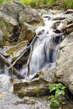 Beautiful Waterfall Stream Flowing among Stones. Closeup of Beautiful Waterfall Stream Flowing among Stones Stock Photo