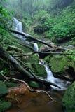 Beautiful waterfall stream Stock Photo