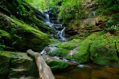 Beautiful waterfall stream Royalty Free Stock Photos