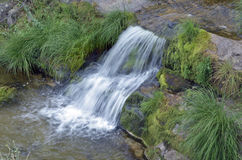 Beautiful waterfall surrounded with moss Royalty Free Stock Photography