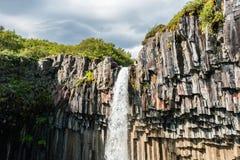 Beautiful waterfall Svartifoss Royalty Free Stock Photography