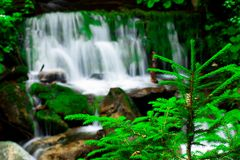 Beautiful Waterfall. A beautiful waterfall with trees in the foreground Royalty Free Stock Photo