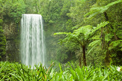 Beautiful waterfall in tropical Australia royalty free stock image