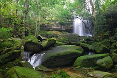 Beautiful waterfall in tropical rainforest. Beauty in nature. Beautiful waterfall in tropical rainforest, Thailand Stock Images