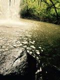 Waterfalling stock image