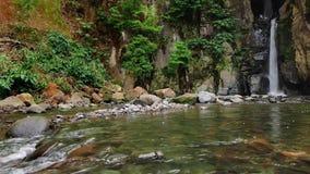 Beautiful waterfall stock video