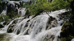 Beautiful waterfall video stock footage