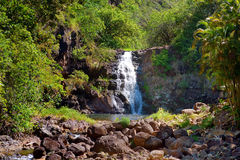 Beautiful waterfall in Waimea Valley on Oahu Stock Photo
