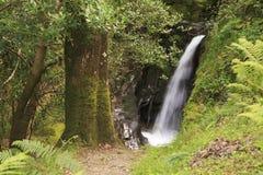Beautiful waterfall in Wicklow Stock Photo