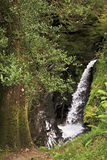 Beautiful waterfall in Wicklow Mountains National Royalty Free Stock Photos