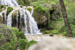 Beautiful waterfall in the wooded forest.  royalty free stock images