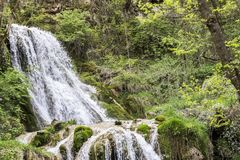 Beautiful waterfall in the wooded forest.  royalty free stock photography