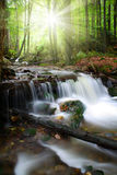 Beautiful waterfalls in the Bavarian Forest-Germany Royalty Free Stock Images