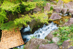 Beautiful Waterfalls in forest. Royalty Free Stock Photo